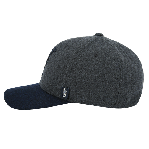 TEAM TNF BALL CAP